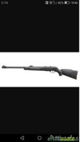 Gamo Big cat 4.5/.177