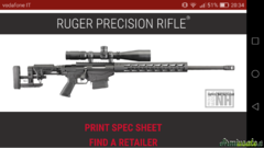 Ruger precision rifle .308 Winchester