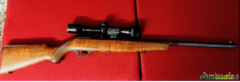 Beretta sport .22 Long Rifle